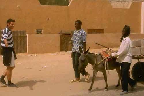 09. Ane-stop en Mauritanie