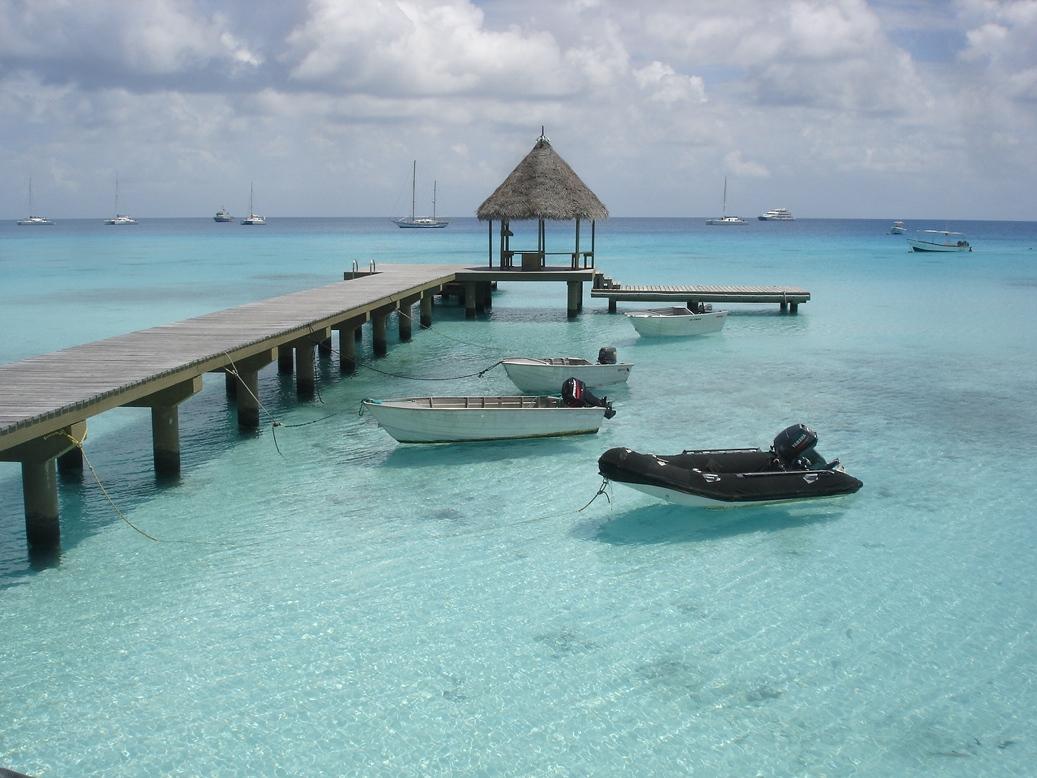 113. Polynesie1