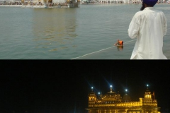 182. goldentemple