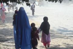 189. paysagetypiqueafghanistan2