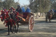 190. paysagetypiqueafghanistan3