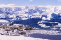 54. Antarctique 5